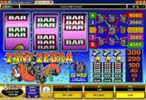 Zany-Zebra-Slots-2